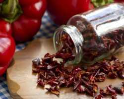 Как заготавливать болгарский перец на зиму — предлагаю мои любимые варианты заготовок