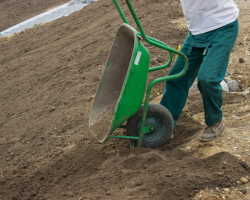 Определение кислотности и питательности почвы — растения-индикаторы