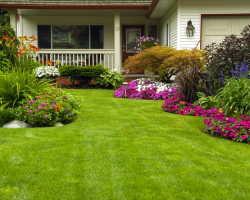 Почувствуй себя ландшафтным дизайнером: простые советы, как стильно оформить сад