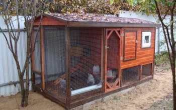 Теплое жилье для курочек — чтобы зимой они были довольны и продолжали нестись