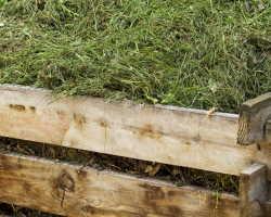 Удобрение из травы — готовим подкормку для растений