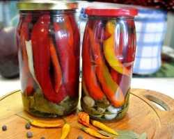 Маринованный горький перец — рецепты заготовки, засолка, консервирование