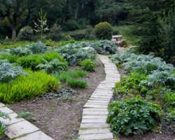 Быстровозводимые садовые дорожки из пластиковых модулей