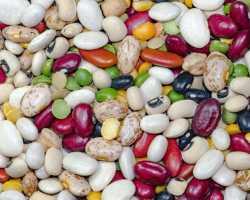 Овощные бобы