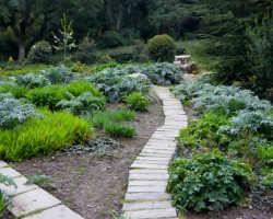 Садовые дорожки своими руками: материалы, идеи