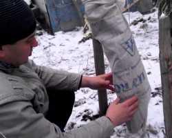 Зима близко: как я защищаю свои яблони от холодов
