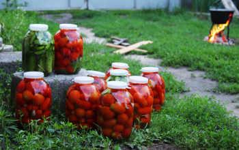 Как приготовить вкусные помидоры на зиму — четыре рецепта на любой вкус