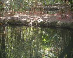 Укрепление берегов водоемов