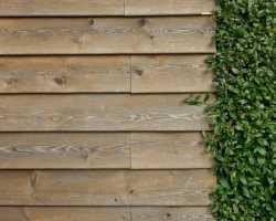 Садовая дорожка: как сделать
