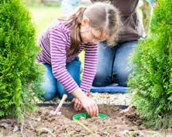 Когда лучше проводить посадочно-посевные работы на участке: народные приметы и лунный календарь