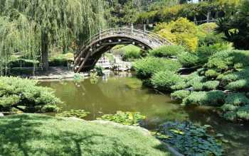 Ландшафтный дизайн японского сада
