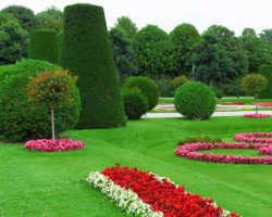 Внутренний дворик — укрытие от посторонних взглядов: советы садоводам