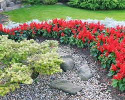 Клумбы из камней — гармония с природой