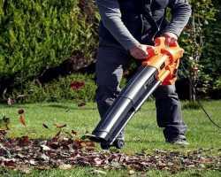 Как выбрать садовый пылесос для сбора листьев. Красивая осень без лишних хлопот