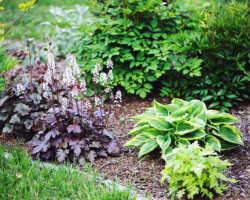 3 приема, которые помогут сделать хосту еще красивее летом
