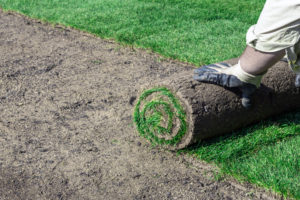 Советы по укладке рулонного газона