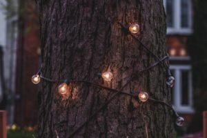 Ландшафтное освещение