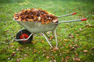 8 ошибок, которые вы совершаете осенью
