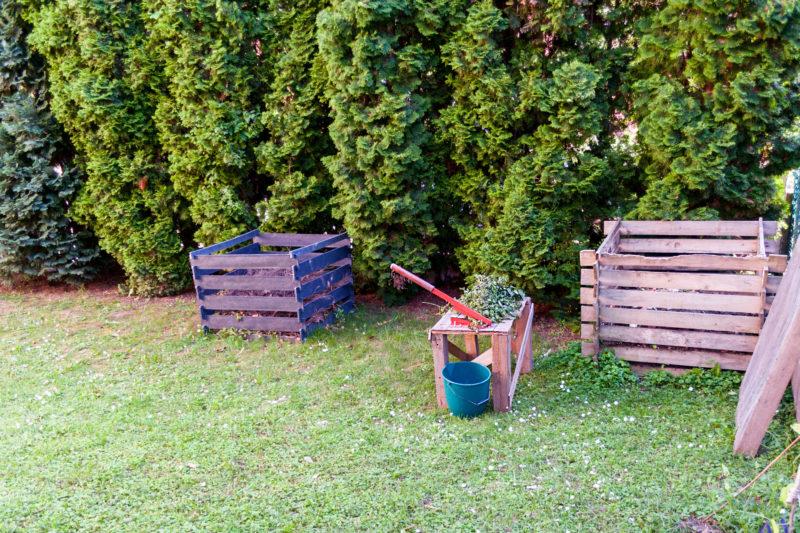 Польза томатной ботвы для огорода