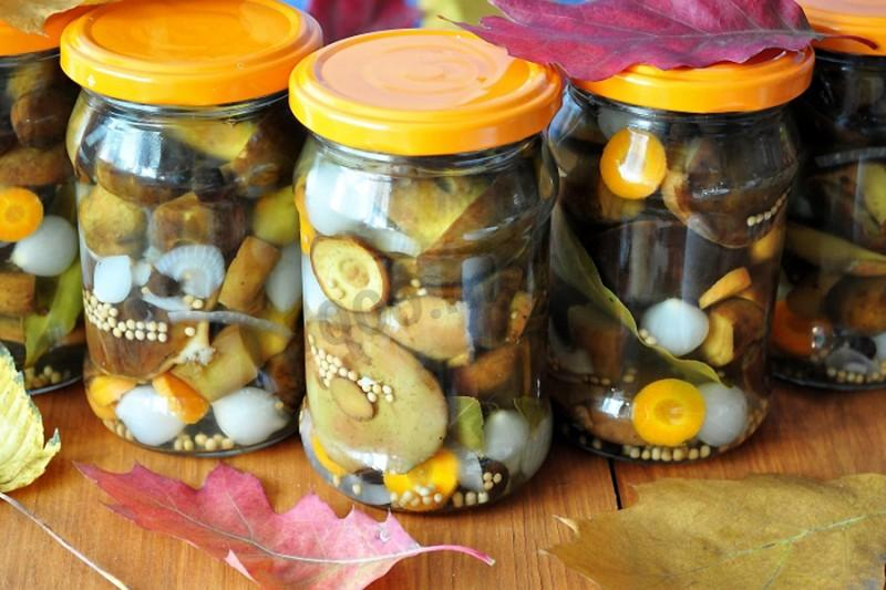 Грибы, маринованные на зиму – как приготовить вкусно, лучшие рецепты маринадов