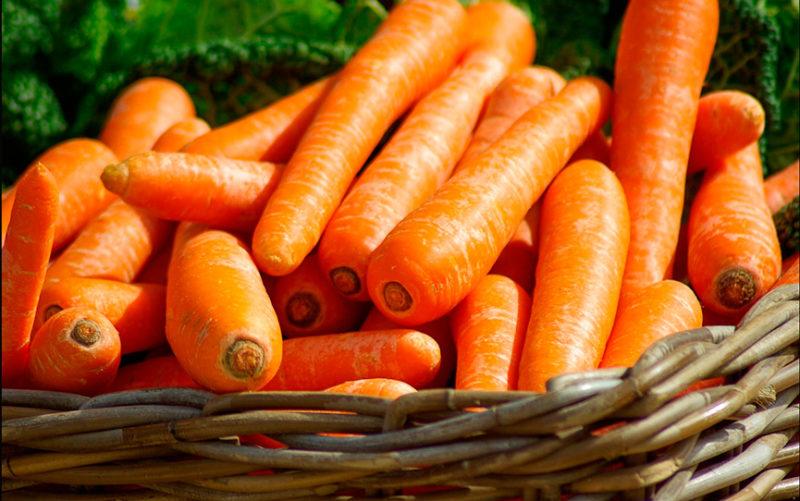 Хранение моркови по всем правилам в домашних условиях