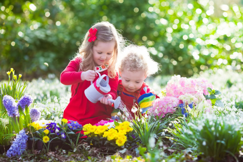 Клумбы в саду своими руками - воплощаем идеи в жизнь