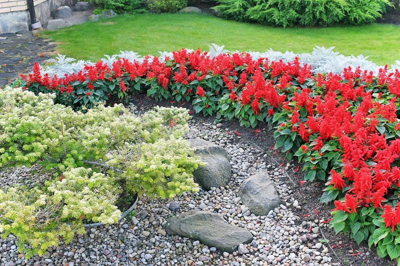 Клумбы из камней - гармония с природой