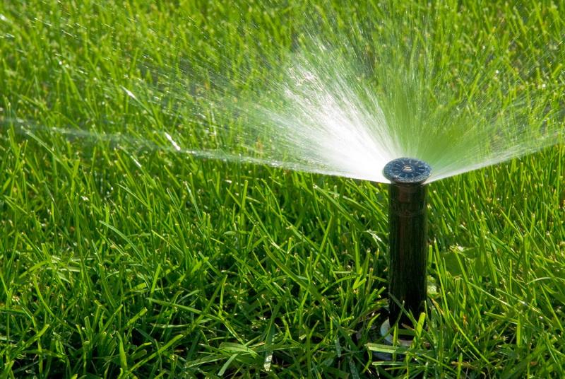 Как правильно смонтировать автоматический полив газона своими руками