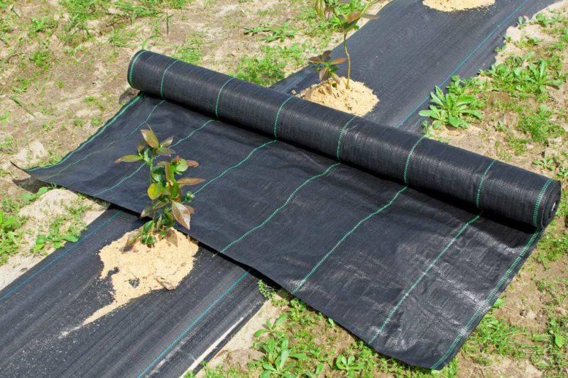 Разбираемся, что же такое укрывной материал от сорняков. И эффективен ли он на самом деле
