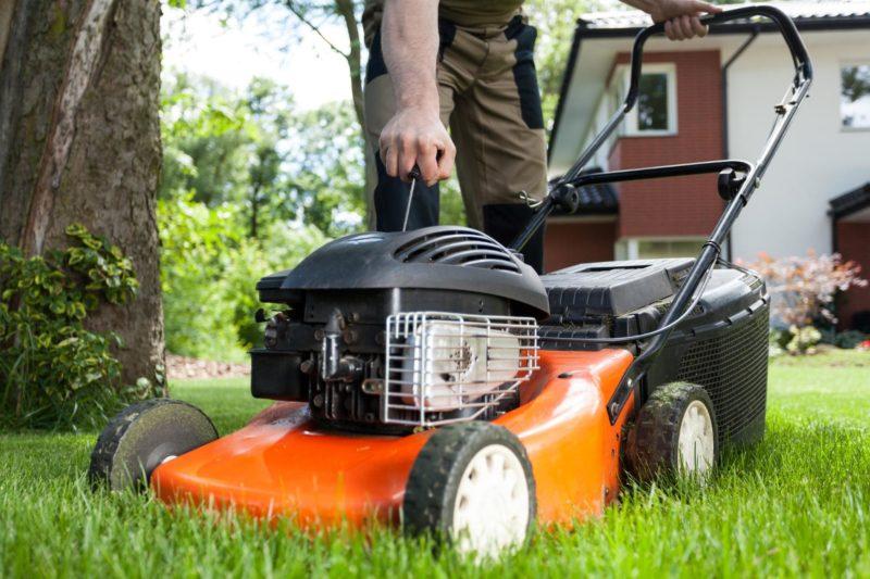 Газонокосилка на бензине: как облегчить работу с газоном