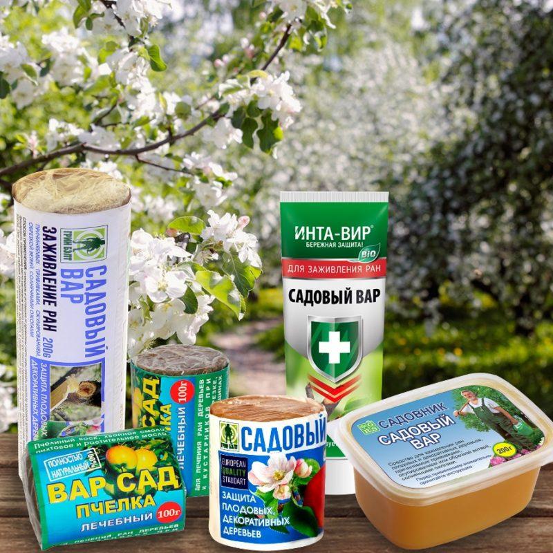 Приготовление и применение садового вара: чем его можно заменить