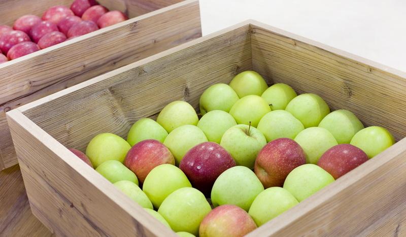 Правила сбора урожая яблок и груш