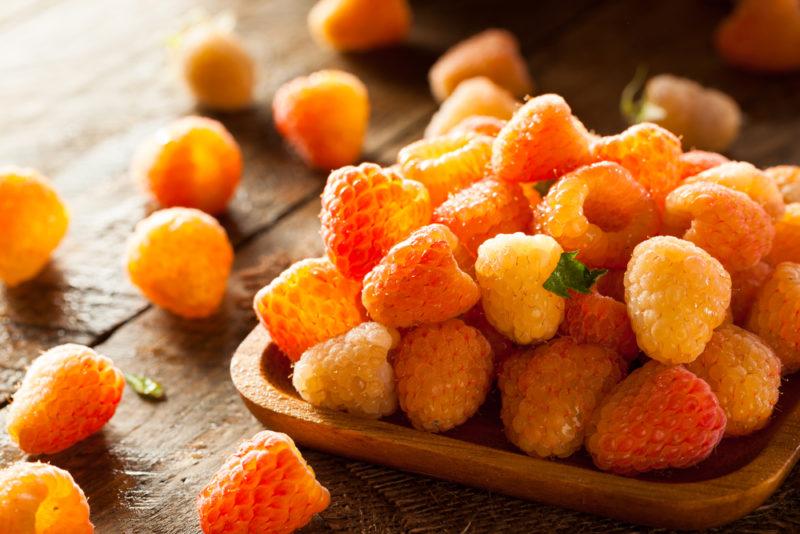 Крупноплодная, сладкая, душистая: лучшие сорта высокоурожайной малины