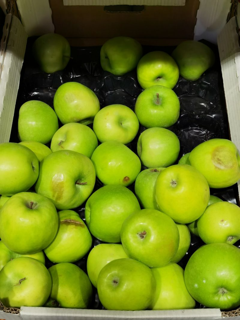 Что нужно знать о зимостойких сортах яблонь