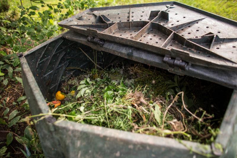 Самостоятельно растущий и разрыхляющий почву компост