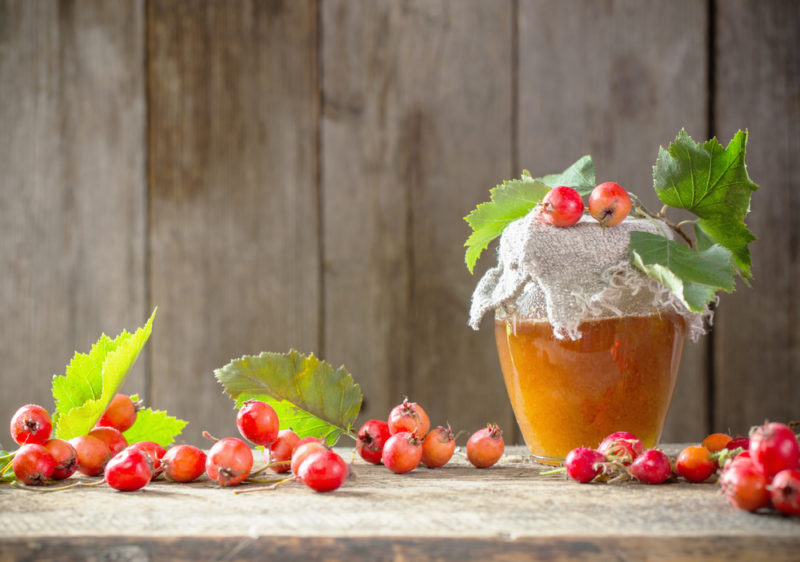 Рецепт вкуснейшего компота из боярышника