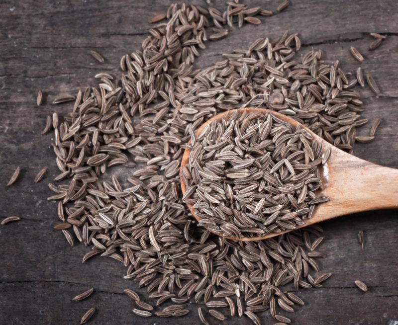 Выращиваем пряные травы на садовом участке — 5 отличных вариантов для вашего удовольствия
