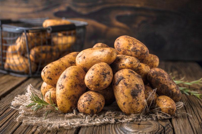 Сажаем картофель правильно: наиболее актуальные способы посадки