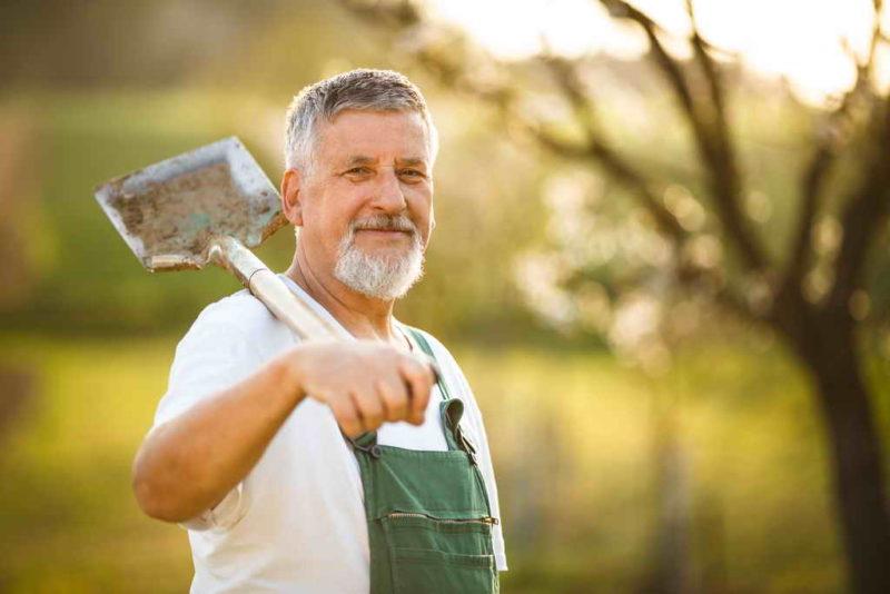 Как уже в мае получить первый урожай — полезные советы