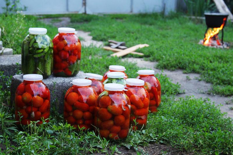 Рецепт вкусных помидоров с морковной ботвой