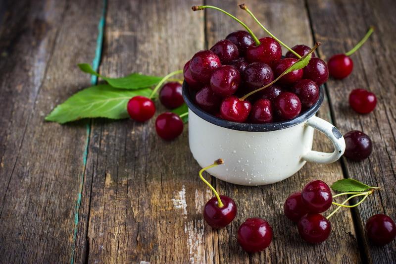 Выращивание вишни сорта Владимирская