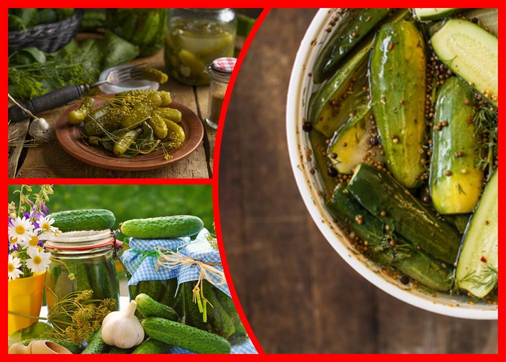 Пикантные огурцы, засоленные с горчицей: вкусная закуска на зиму