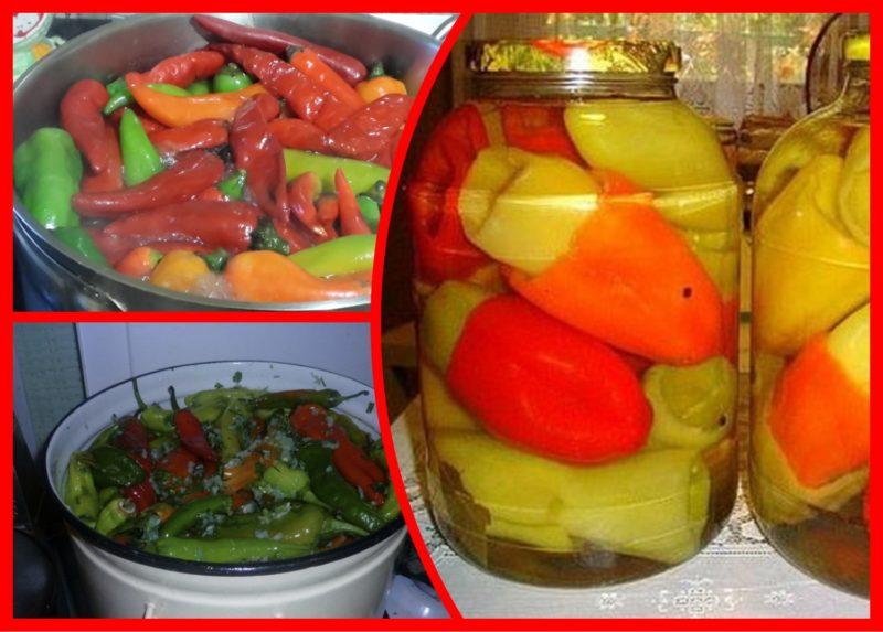 Болгарский перец, засоленный целиком на зиму: оригинальные рецепты «от нашего стола вашему»